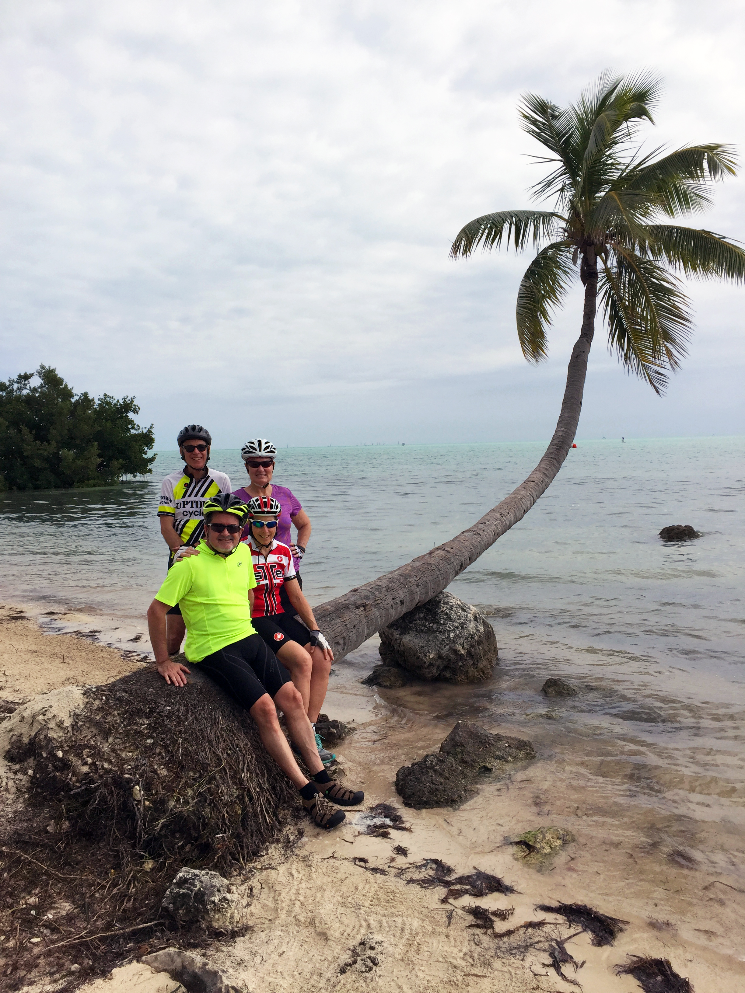Keys bike tour, including a stop at the Moorings palm tree from Bloodline