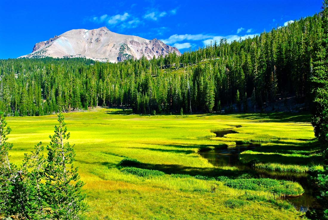 Back country and meadow, Lassen Volcanic national park