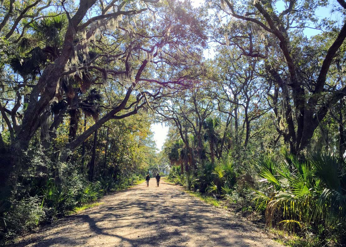 Pinckney Island National Wildlife Refuge hike