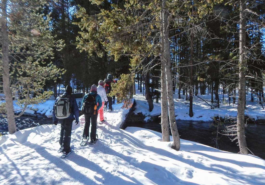 Snowshoe or cross country ski your way around Yellowstone for an active winter vacation.