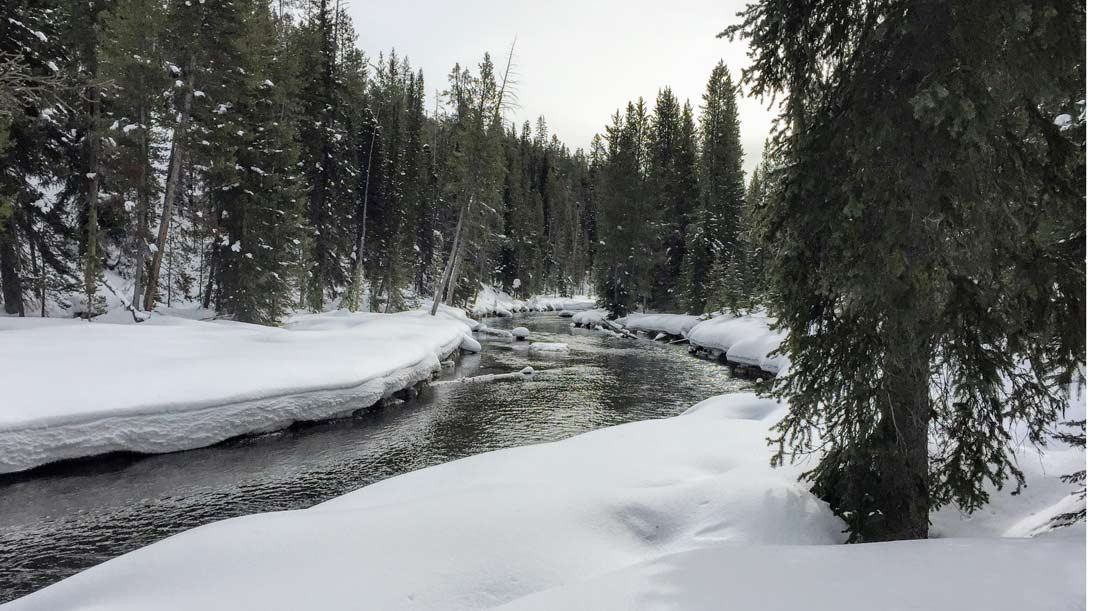 We snowshoed along Yellowstone's Firehole River to Lone Star Geyser.