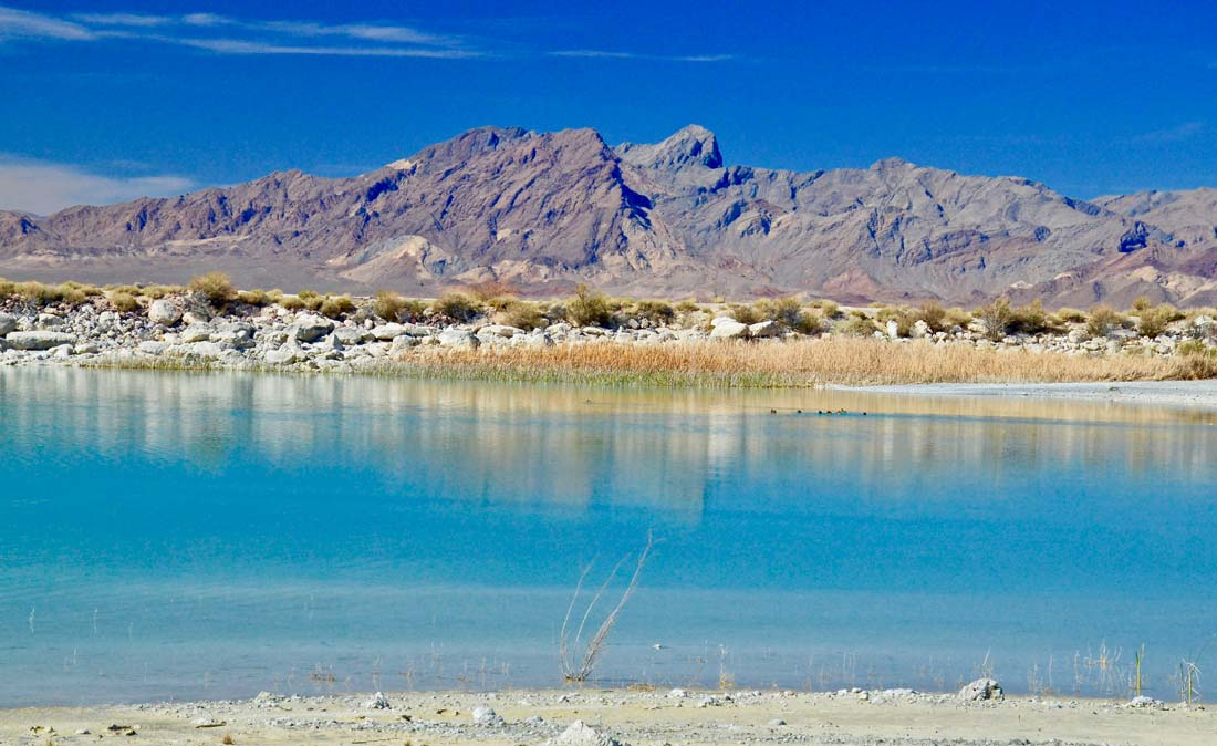 Ash Meadows National Wildlife Rufuge is a short drive from Death Valley