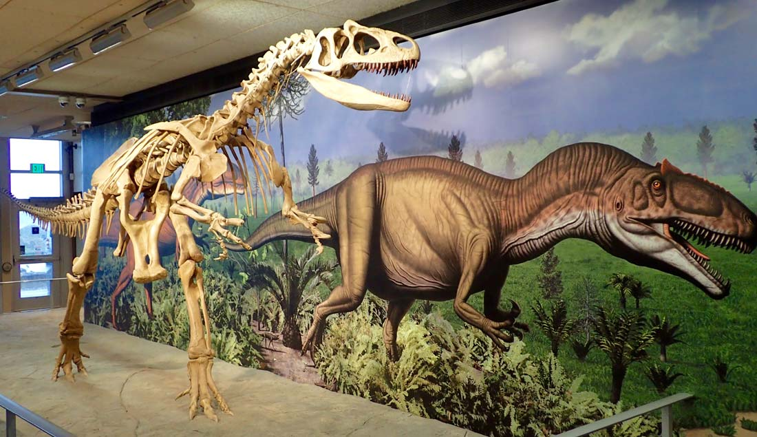 Dinosaur National Monument best visitor center