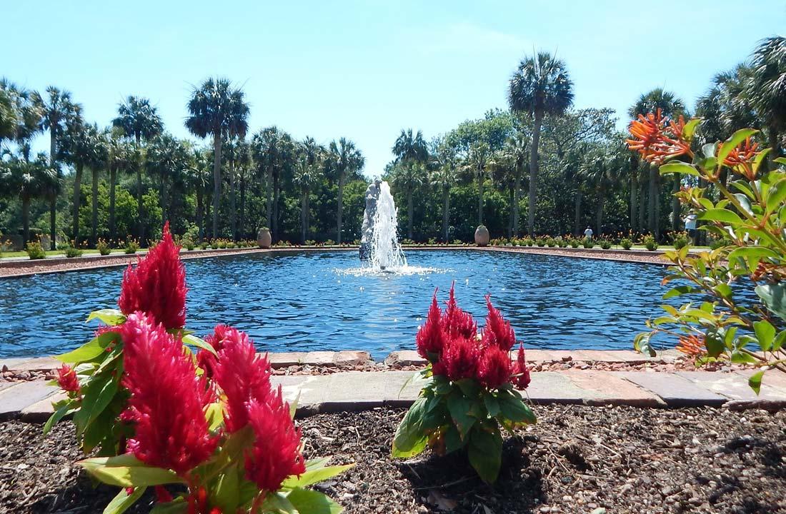Top things to do Botanical Garden South Carolina