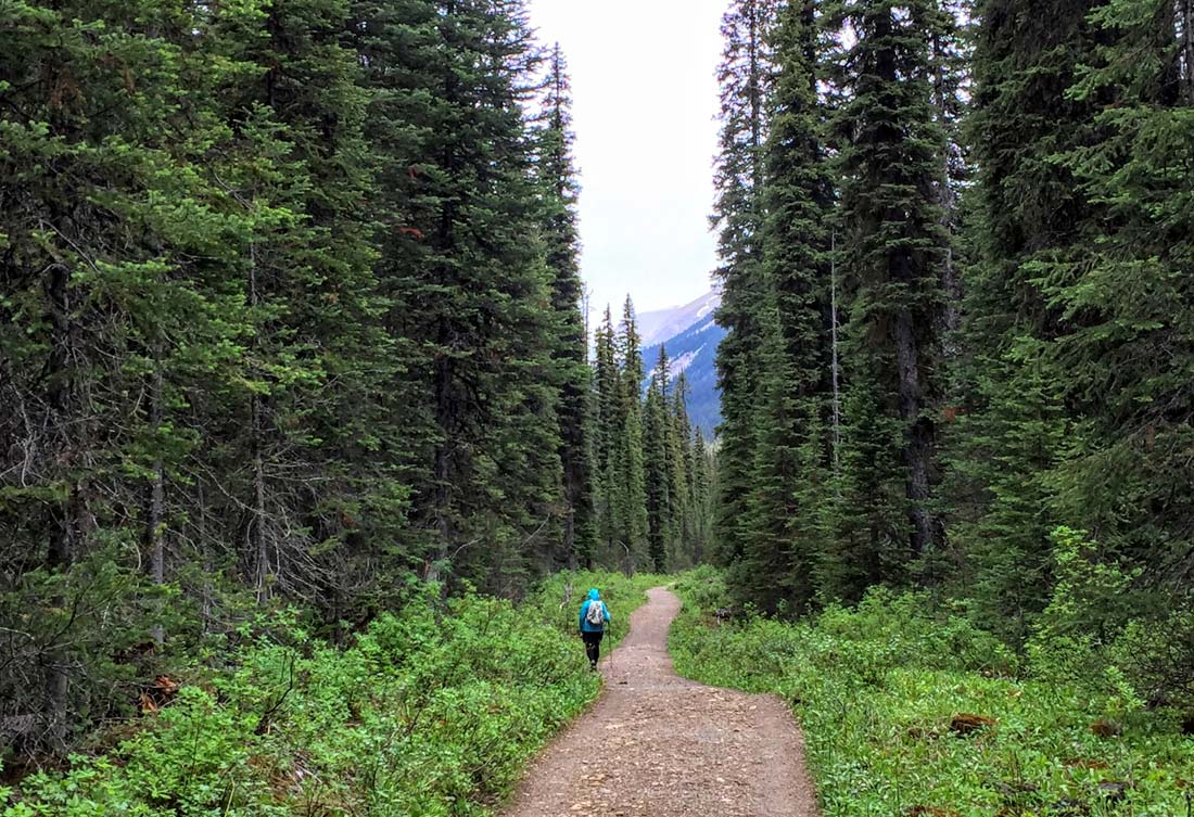 Active travel hiking Canadian Rockies