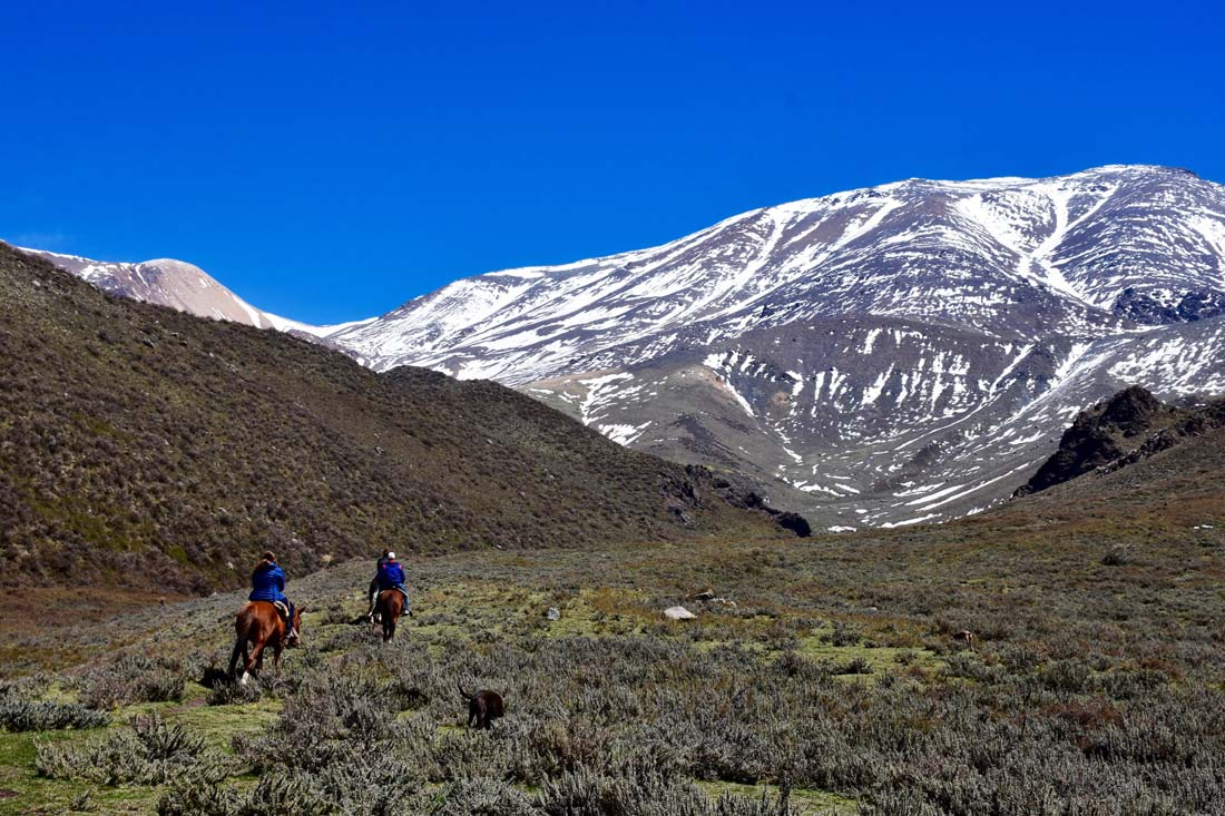 high andes gaucho horseback ride