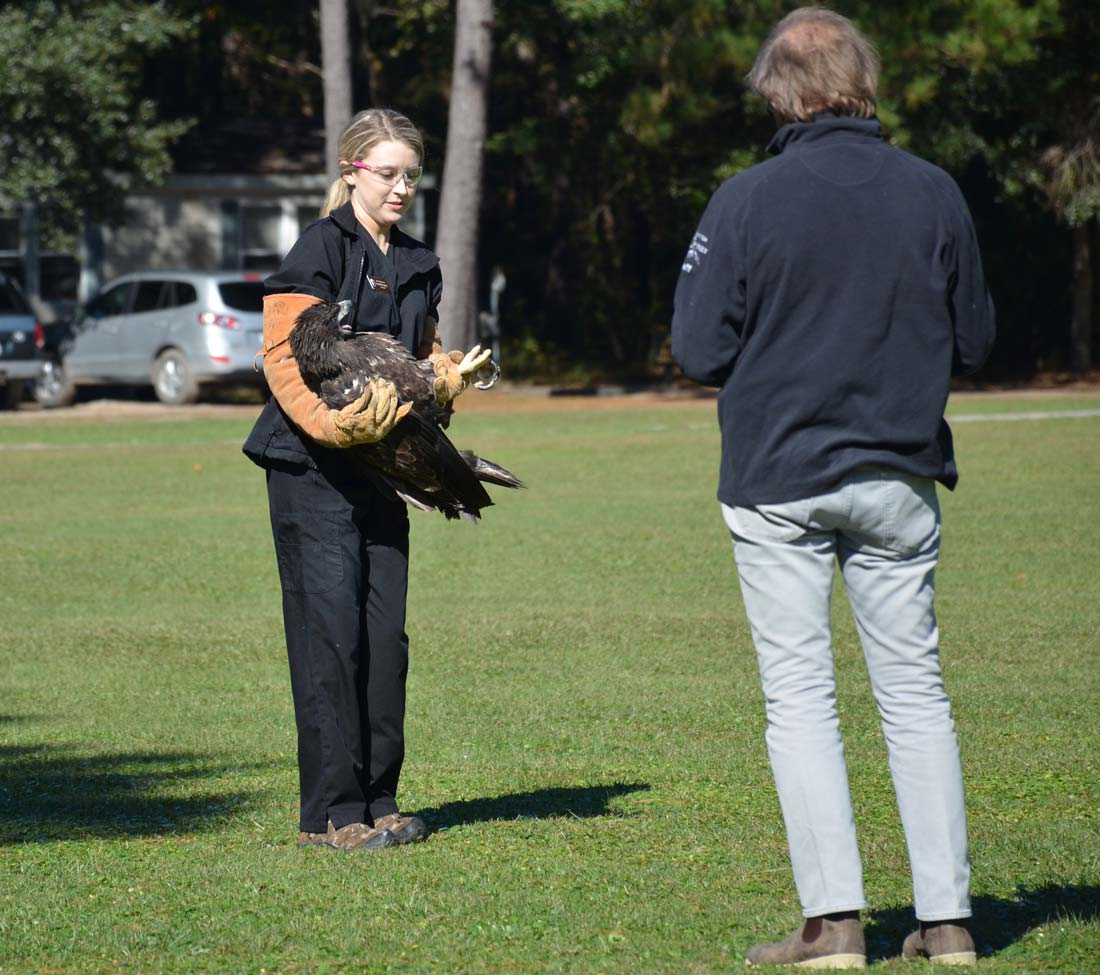 Eagle release birds prey