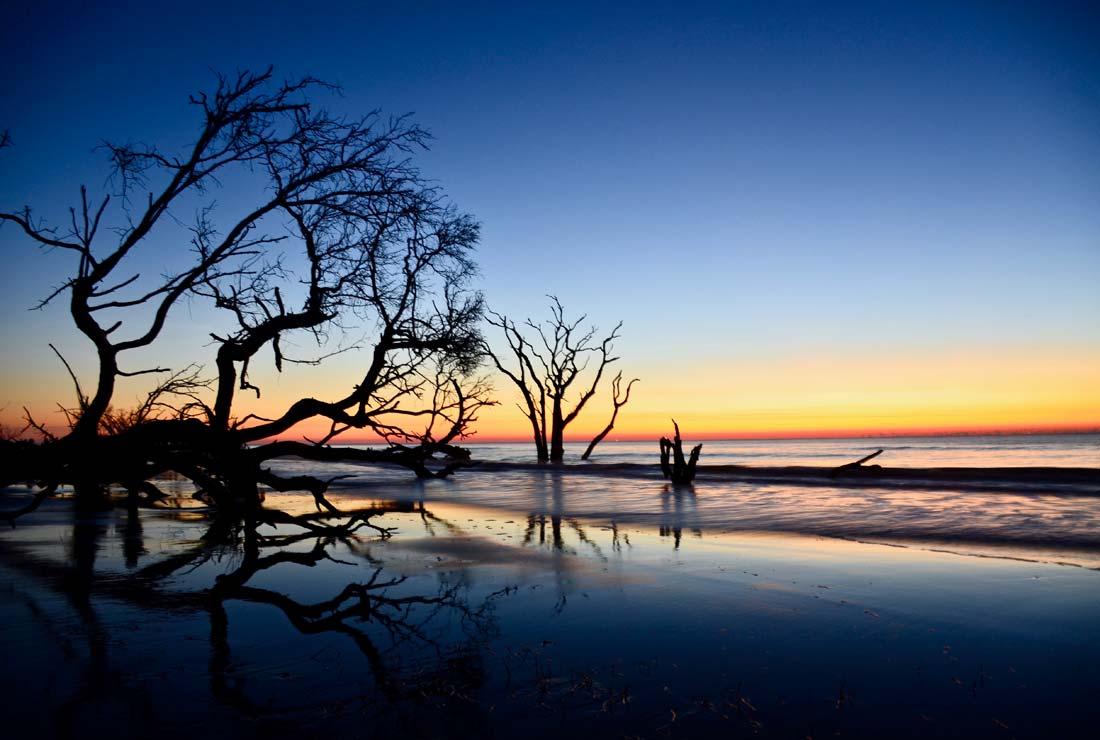 Charleston sunrise Boneyard Beach