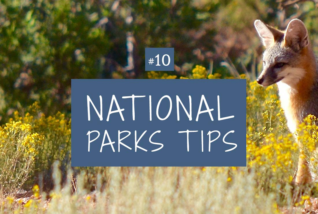 national park safety tips
