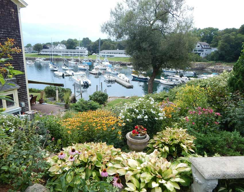 Ogunquit vistas of flowers and boats