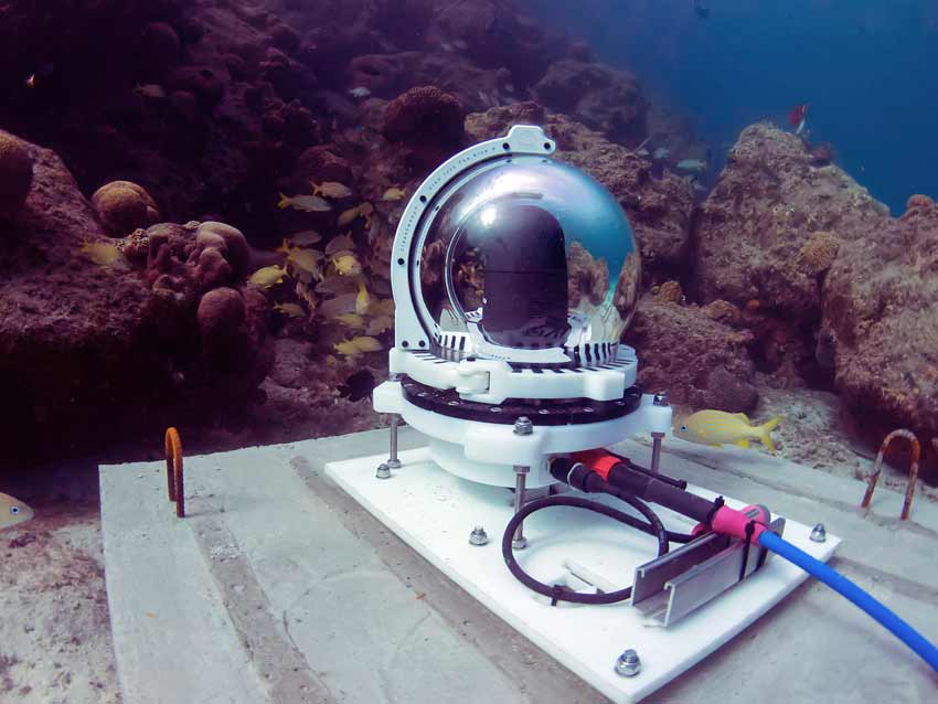 Check out the online underwater reef research cam.
