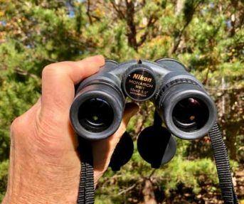binoculars popular gift nature bird watching