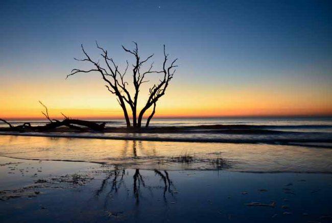 charleston barrier island sunrise