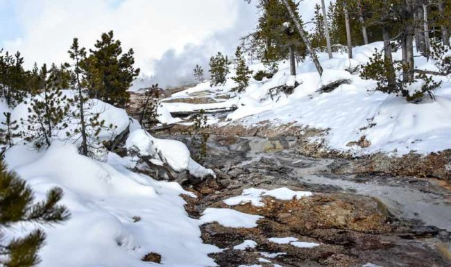 steamboat geyser winter yellowstone tallest world