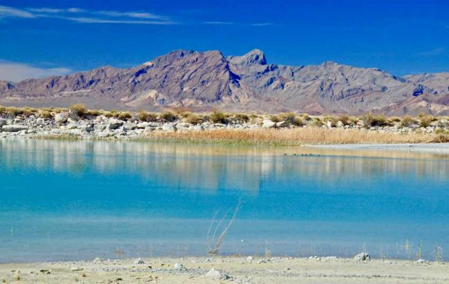 Ash Meadows National Wildlife Refuge, NV