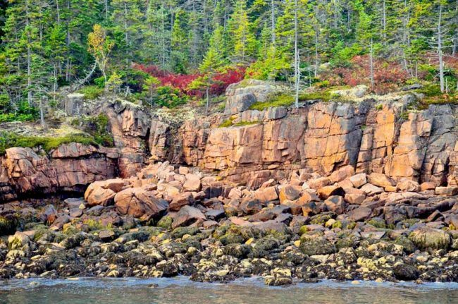 We hiked the Ship Harbor Trail after visiting Acadia's iconic Bass Harbor Lighthouse.