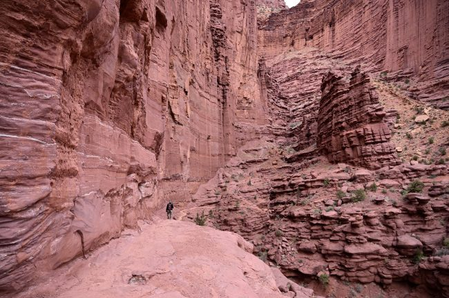 Fisher Towers near Moab surprised us and we're definitely going back.